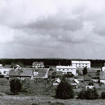 Madliena senāk III