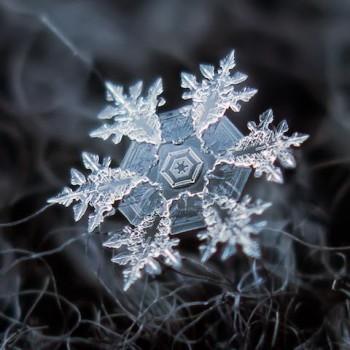 Sniegpārslas tuvumā