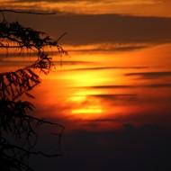 26. jūnija vakara saule